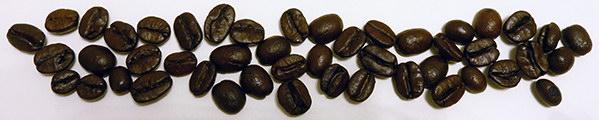 [Image: kavove-zrnka-lajna.jpg]